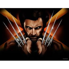 the_wolverine